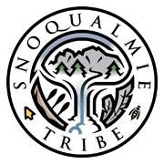https://get-t.net/wp-content/uploads/2019/07/Snoqualmie.png